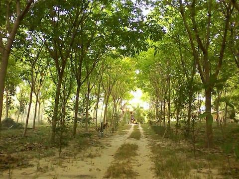 Baan Suan Hideaway