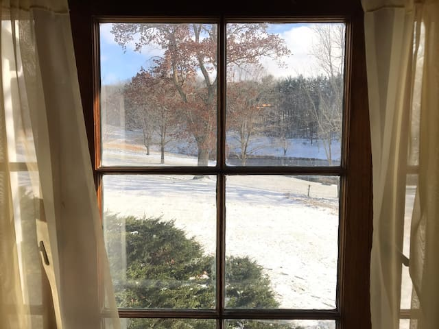 Winter view from living room