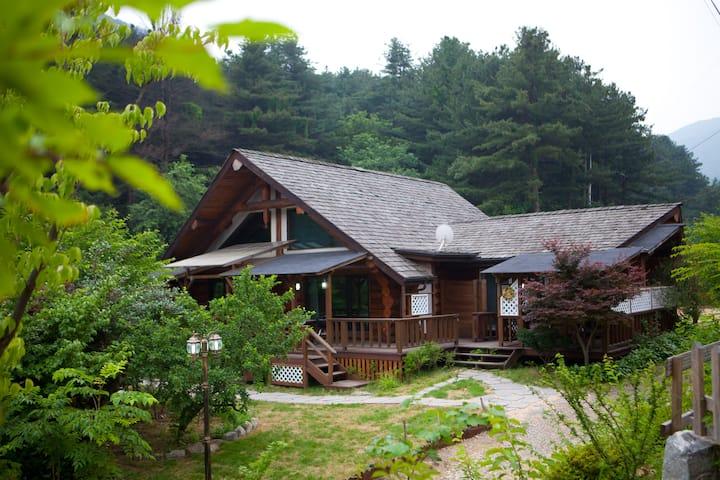 작은 숲속 오두막집 ( 맑고깨끗한공기와 1급수계곡 산책로에서 힐링) 마루