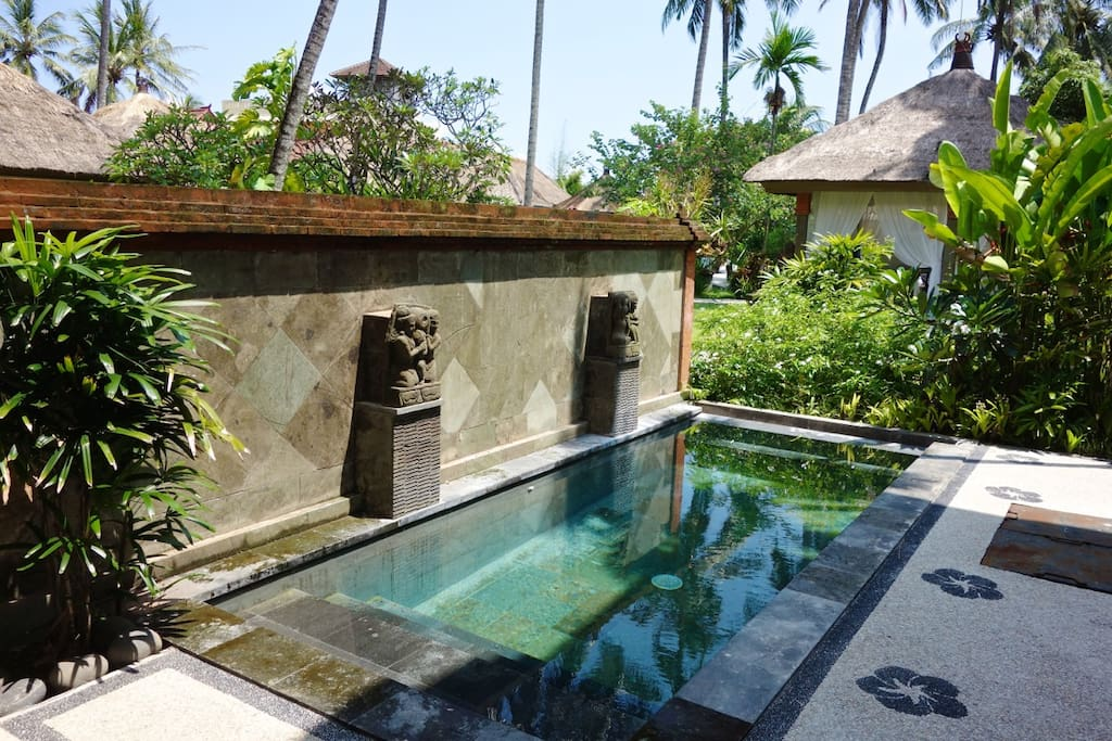 Villa's private plunge pool.