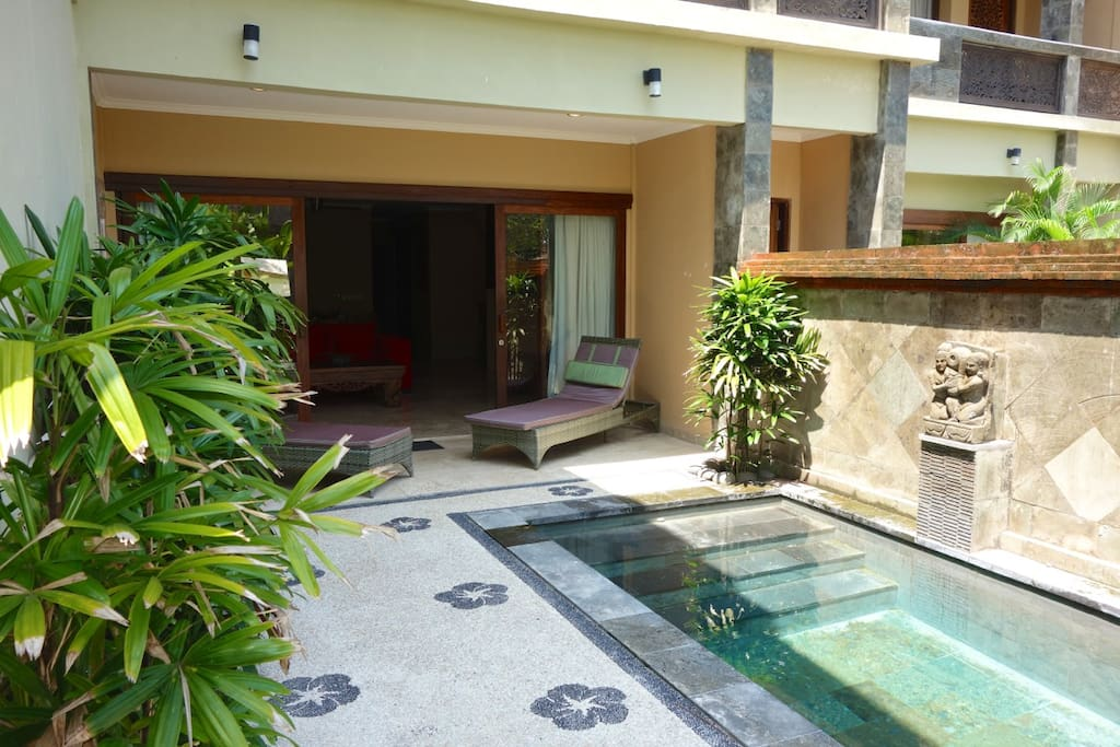 The terrace and your own private pool area.