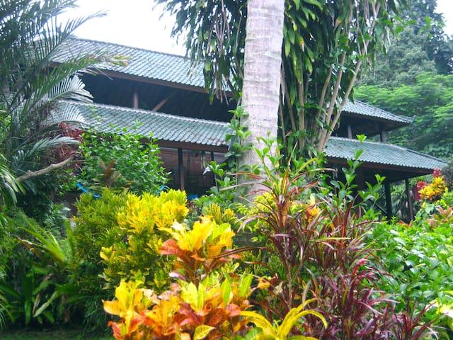 巴厘岛,靠近乌布,宁静而隐秘