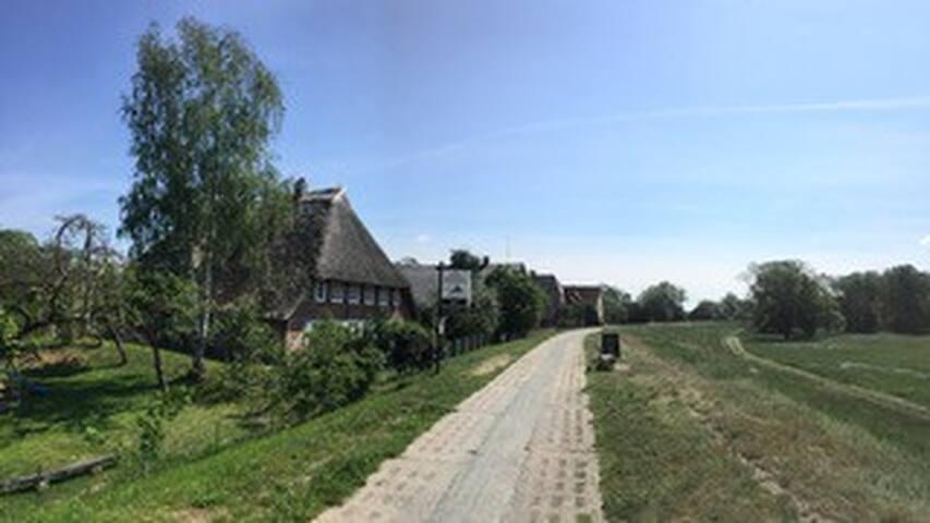 Reetdachhaus Jeroch mit Elbblick + direkt am Deich