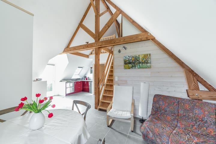 T3 charmant dans maison golfe/océan - Sarzeau - Apartment