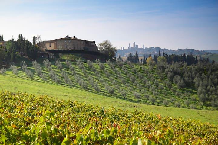 Apartment in Farmhouse Tuscany FIVE - San Gimignano - Apartemen