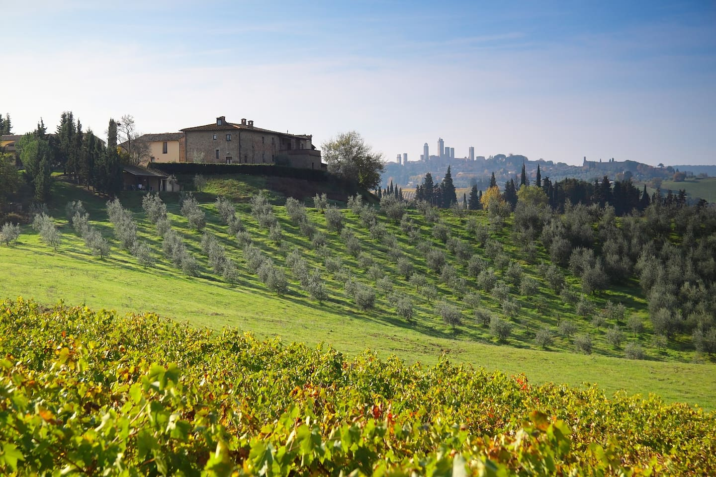 The Montegonfoli Farmhouse and the San Gimignano towers
