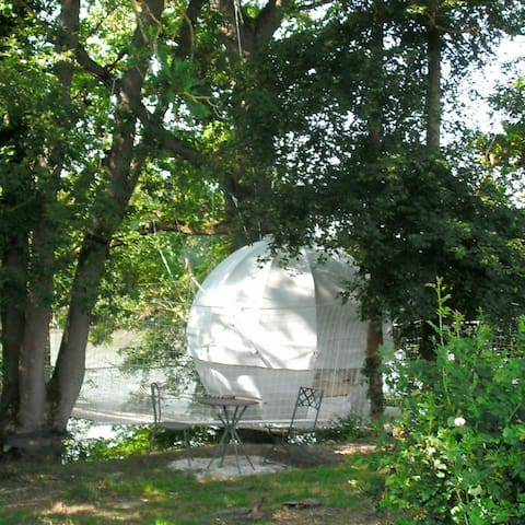 Le Cocoon - Saint-Christaud - Igloo