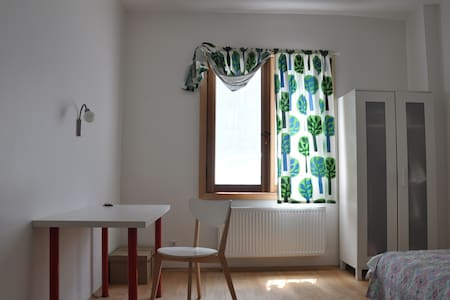 Lively room in 2b renovated flat - Κωνσταντινούπολη