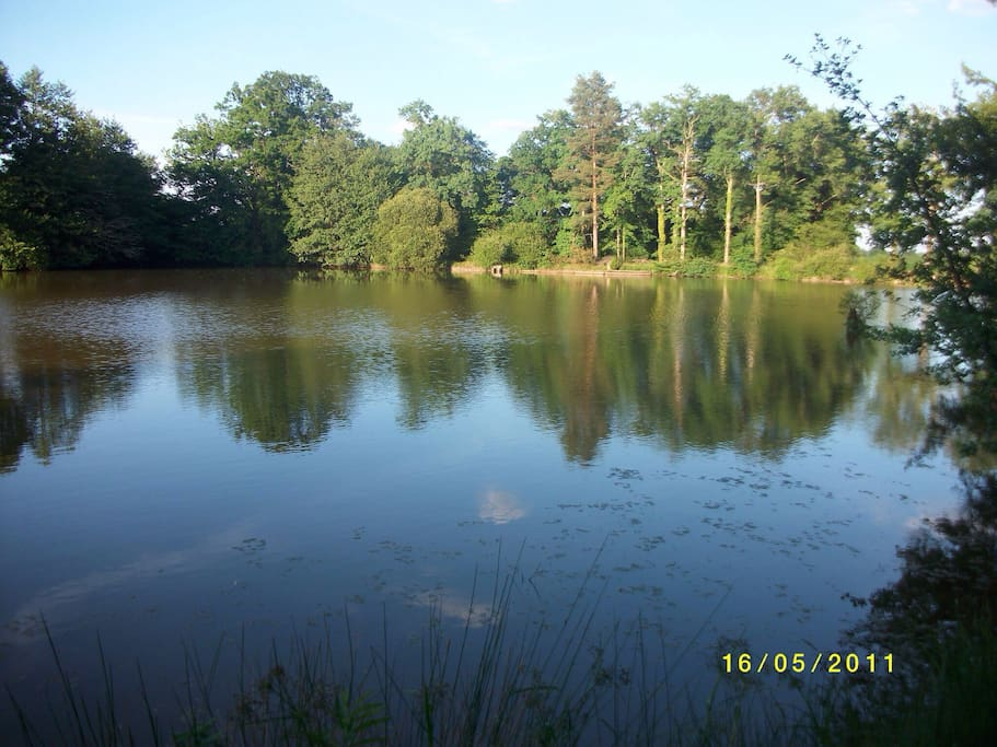 Our 5 acre private lake great to fish or just relax with a picnic.