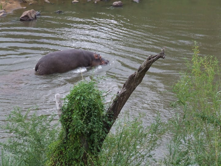 Lukafrica Riverside Chalets-River Chalet 03