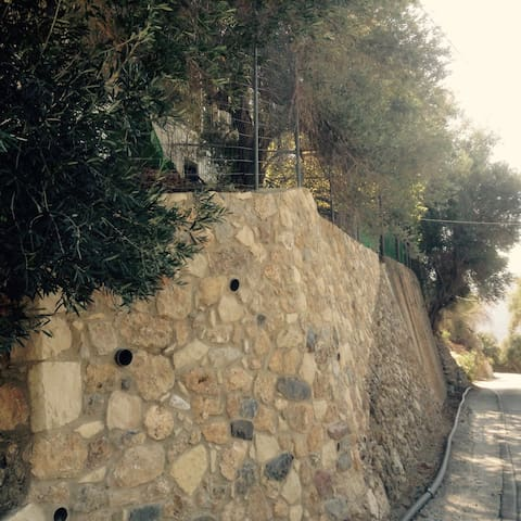 Stone wall (house from the road)