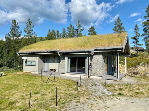 The cabin at Lemonsjøen Jotunheimen - Совершенно новый