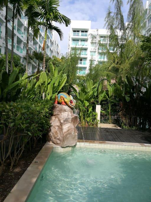 游泳池一角swimming  pool