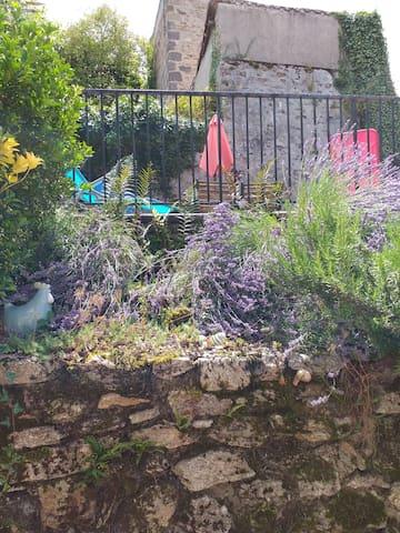Rock garden area