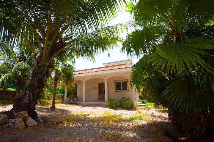 Casa Norte - El Cuyo, Yucatán.