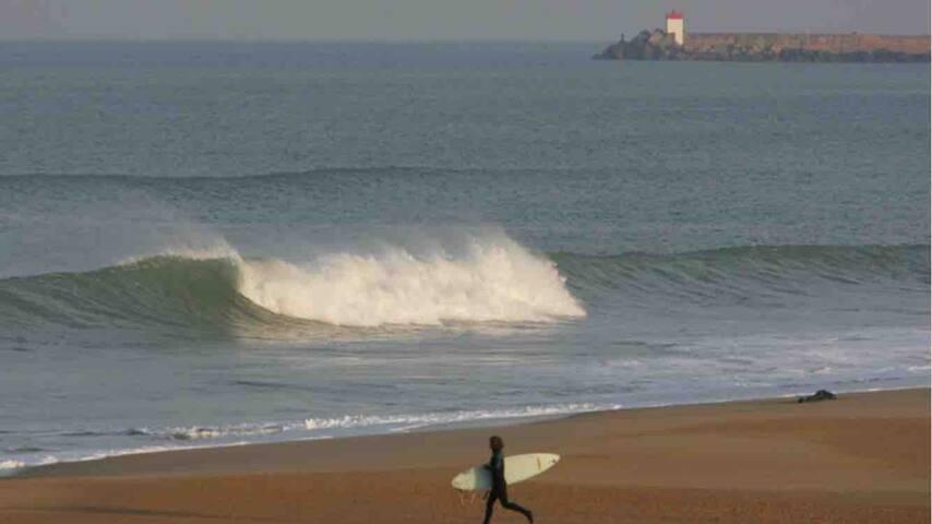 T2 Anglet Chiberta plage àpieds golf surf thalasso