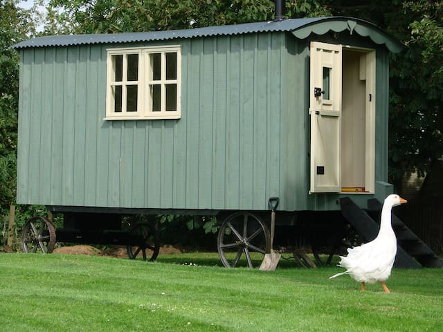 Somerset Shepherd's Hut Holidays