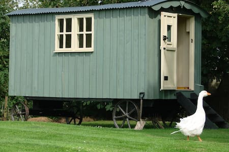 Somerset Shepherd's Hut Holidays  - Mark