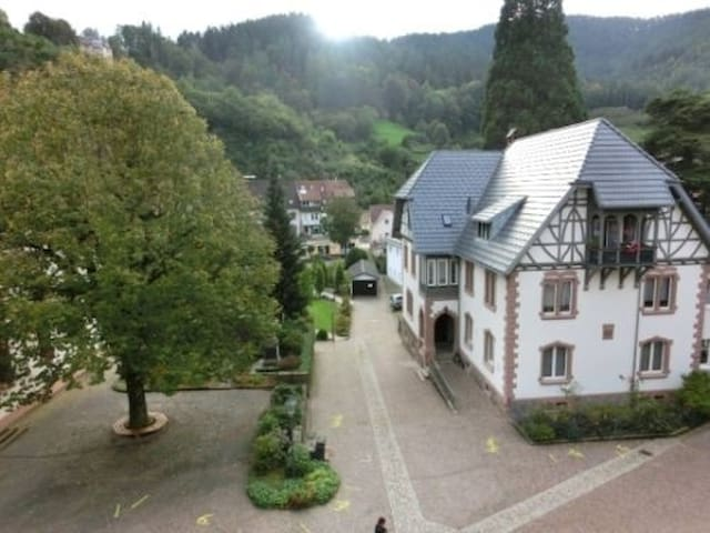 Dream House in the Black Forest - Hornberg - Wohnung