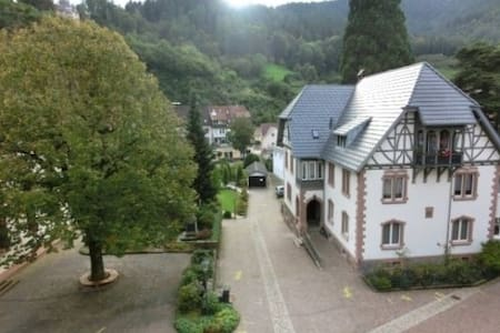 Dream house in the Black forest - Hornberg