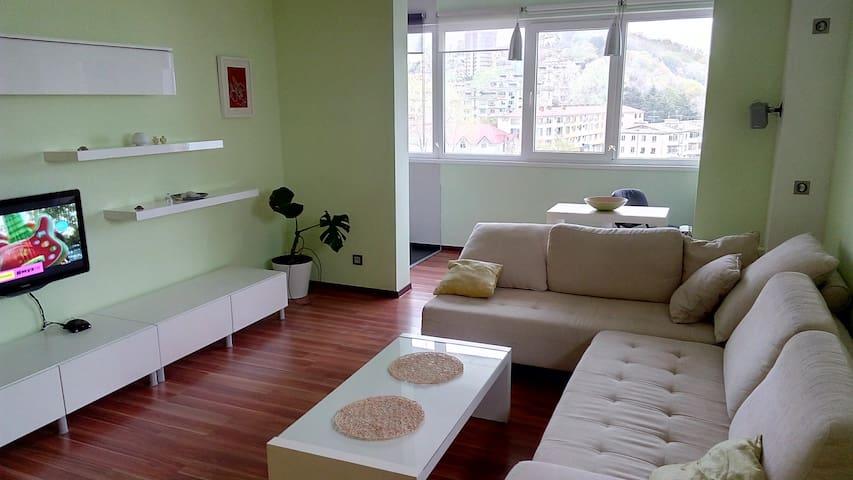 2-ком. 60 кв.м солнечная квартира с видом на море - Sochi - Appartement