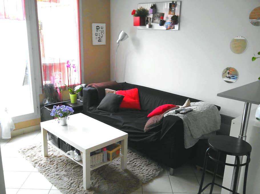 Location appartement t2 appartements louer lyon for Location appartement design lyon