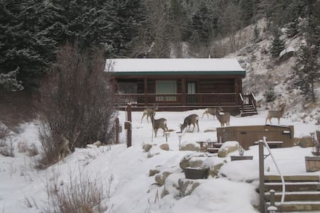Cozy cabin at Two Bears Inn - Red Lodge - Cabin