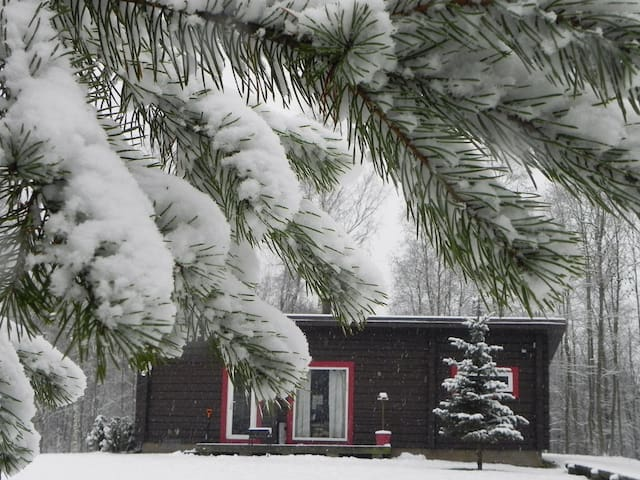 View in winter
