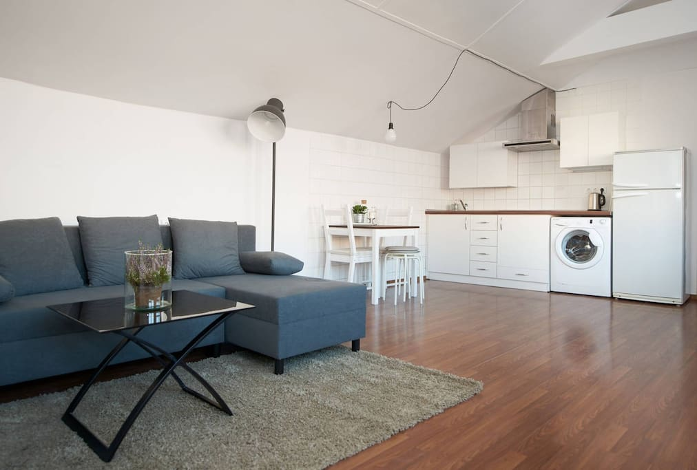 Living room with a kitchen is an open comfortable space
