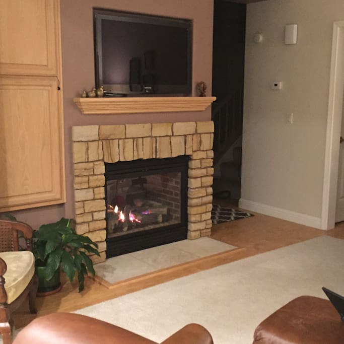 Family room fire place and TV