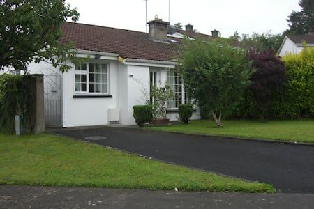 House 417 near University Limerick  - Limerick - Talo