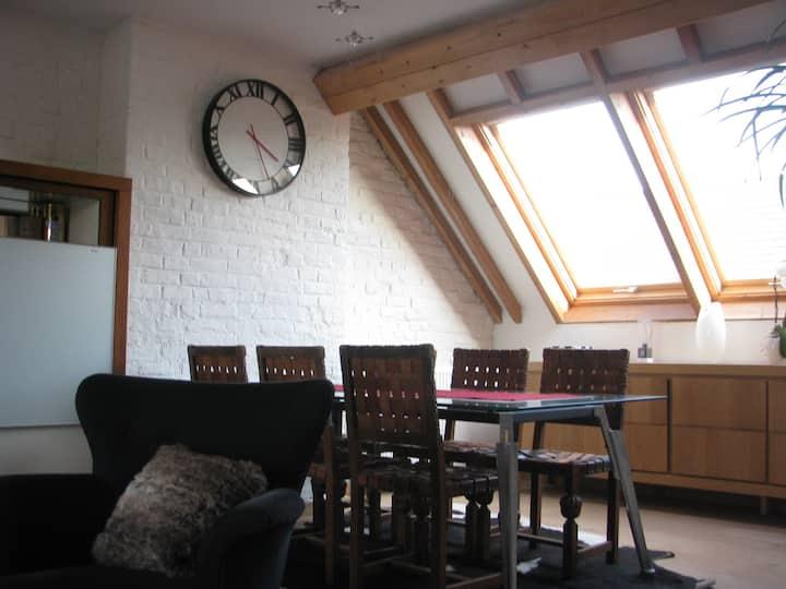 Baudelo's duplex apartment (air conditioning)