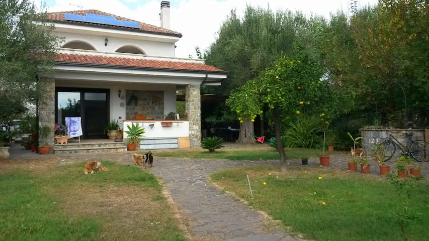Villa with garden on the beach