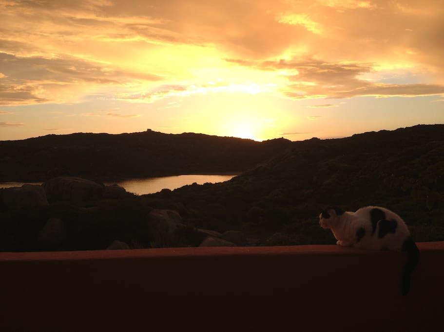 l'alba dal terrazzino di casa