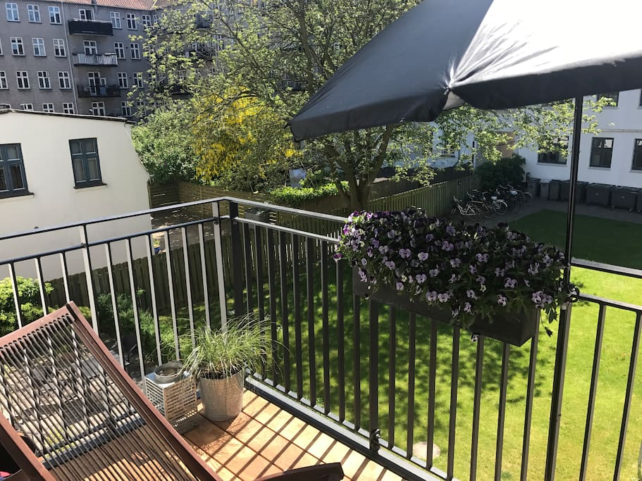 Half of our sunny balcony