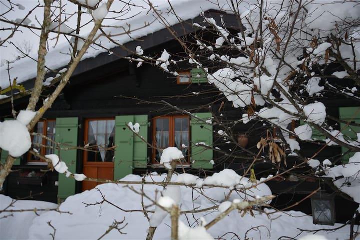 Chalet Lutin  - Saanen - Casa