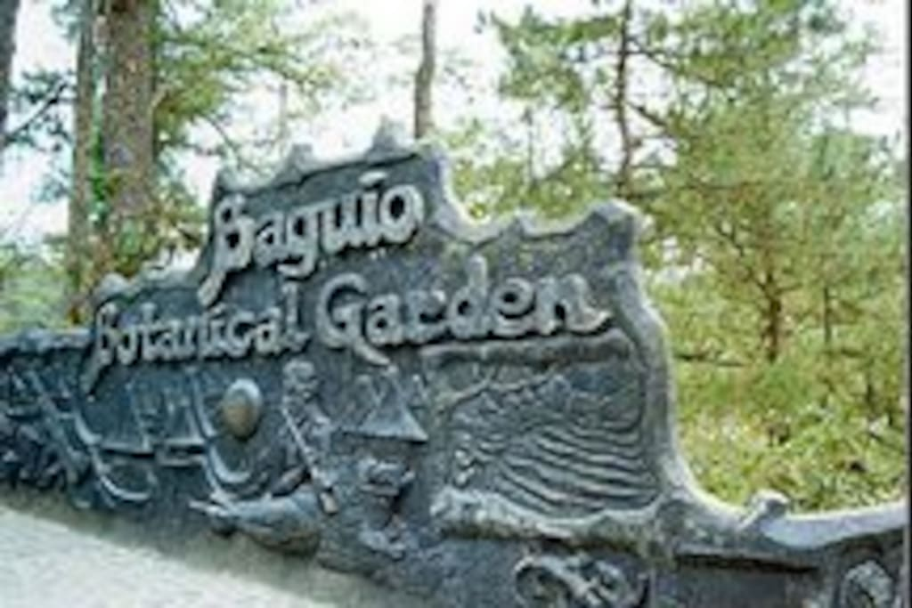 Baguio Botanical Garden, 10-15 minutes drive from check-in place...