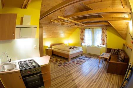 Apartment in Penzion ZET - Vyšné Ružbachy
