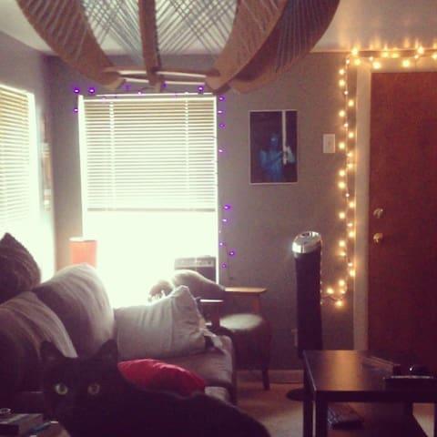 2 Bedroom/Quiet/South Philadelphia - Philadelphia - Apartment
