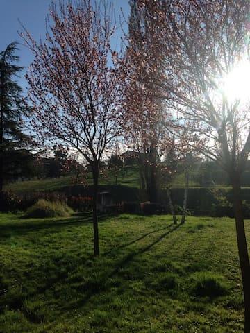 Raffinata villa nel verde - Valenza - House