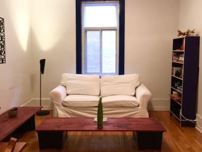 Cozy downtown apartment (Hutchison)