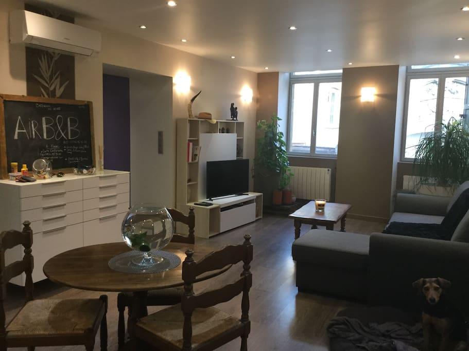 chambre au c ur de mont de marsan appartementen te huur in mont de marsan aquitaine limousin. Black Bedroom Furniture Sets. Home Design Ideas