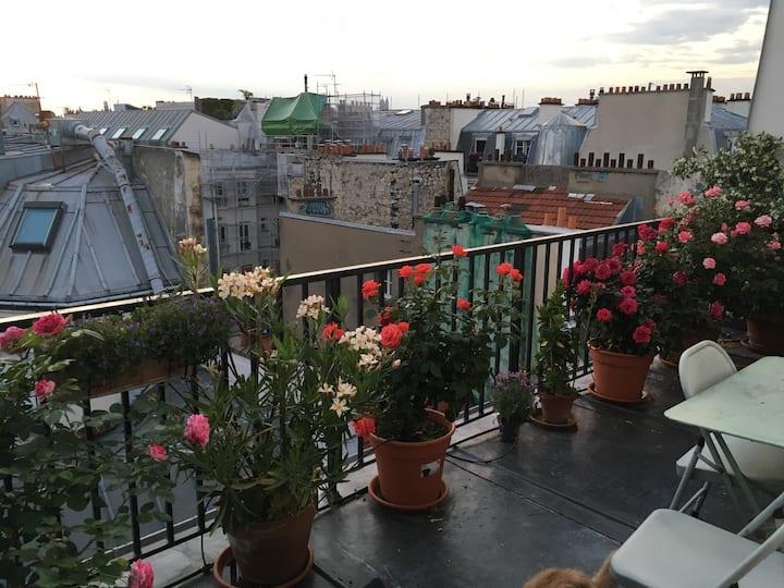 Spacious loft w/ spectacular views, Paris