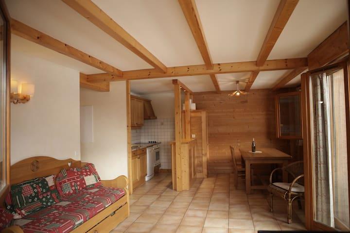 6 ppl apartment at Résidence Les Aravis - Le Grand-Bornand - Condominium