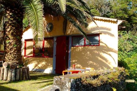 Mãe d´Água - Riverside Cottage - Ribeira Grande - Dům