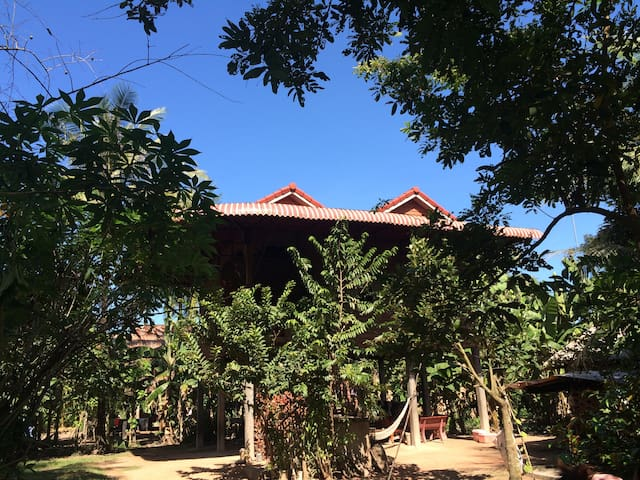 Daily life home stay  - Siem Reap, Cambodia - Haus