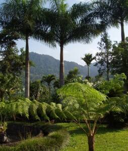 Villa Mary Adjuntas, PR - Adjuntas