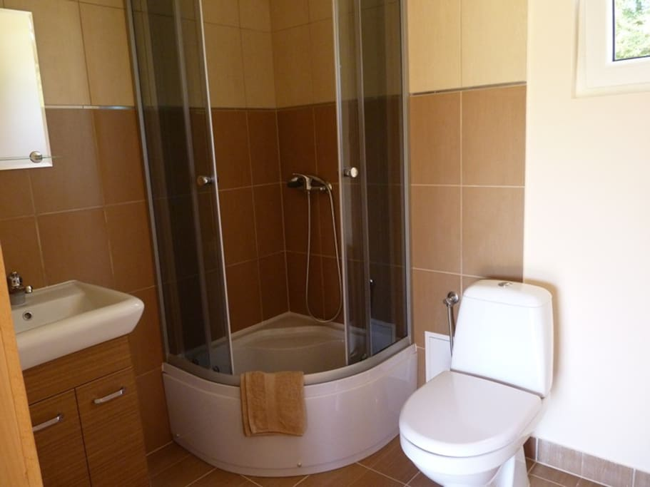 Bright bathroom with higher shower.