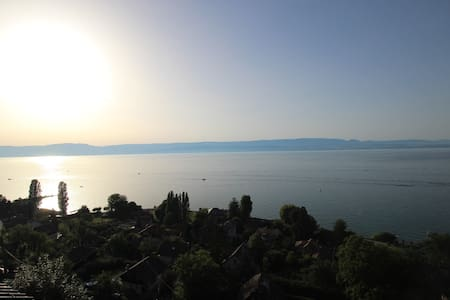 Le charme surplombant le lac - Thonon-les-Bains - Huoneisto