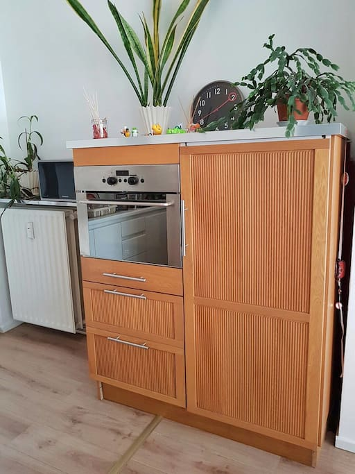 The fridge and oven